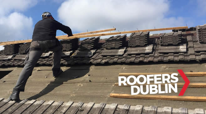 Roofer Maynooth